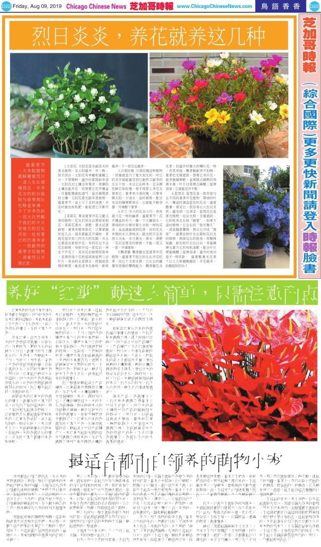 0809_D22-BW_Print