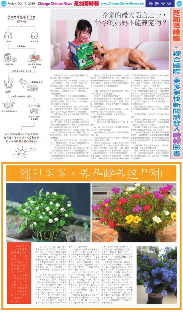 1011_D22-BW_Print