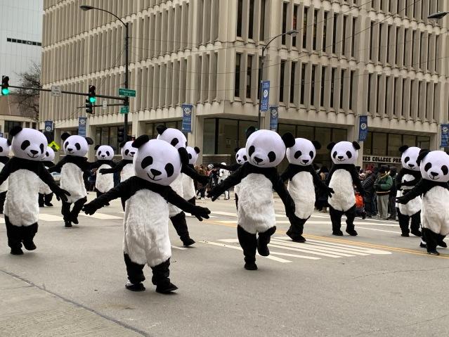 10.多個國寶大熊貓隨著音樂跳起舞來十分可愛